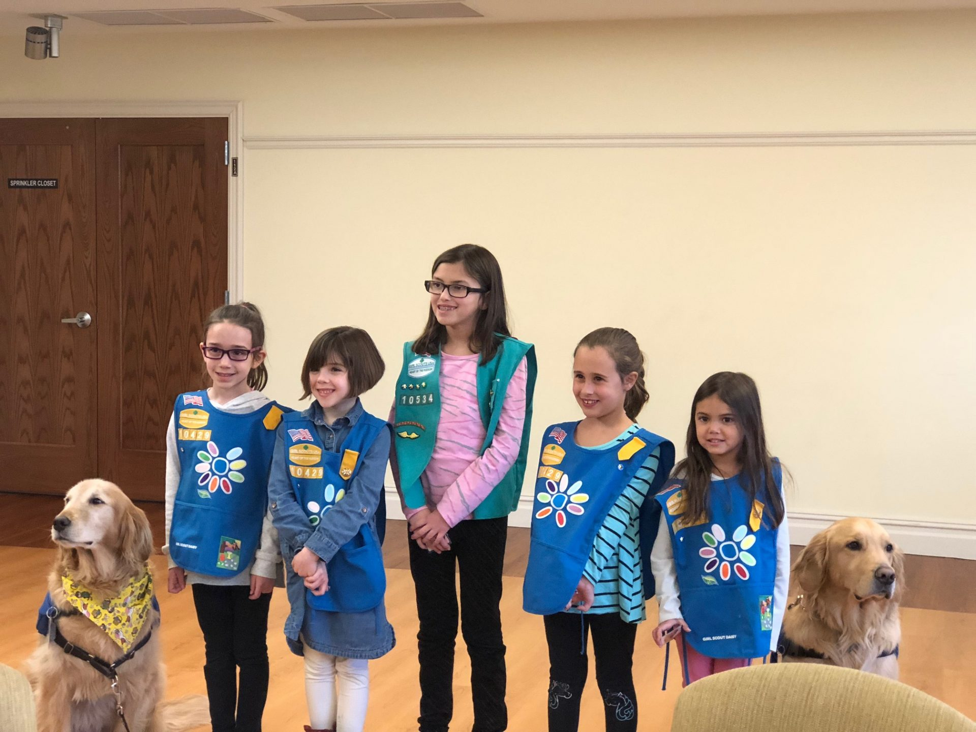 photo of girl scouts with two facility service dogs